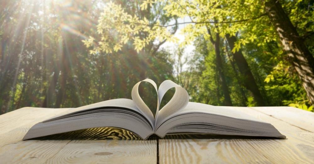 open bible nature